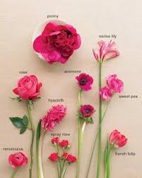 wedding flowers types 43 best flowers images on flowers wedding and botany