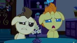 family and relatives my little pony friendship is magic wiki