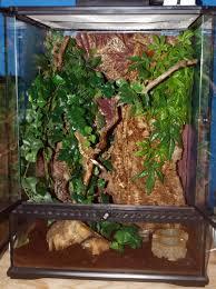 the ultimate crested gecko care guide reptiles guru