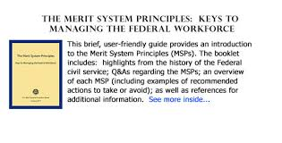 u s merit systems protection board