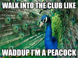 Peacock Meme - walk into the club like waddup i m a peacock misc quickmeme