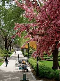 beautiful spring day at the university of minnesota around the u
