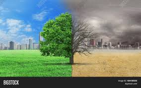 concept climate has changed half image photo bigstock