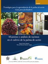 guía muestreo y análisis de racimos en el cultivo de la palma de