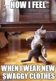Clothes Meme - cool cat stroll meme imgflip