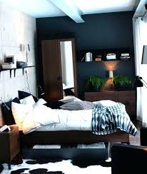 Mens Room Decor Mens Bedroom Decor Bedroom Ideas For Astounding Bedroom Ideas