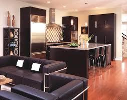 Uncategorized  Espresso Kitchen Cabinets  Espresso Kitchen - Espresso kitchen cabinets