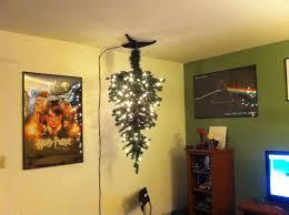 creative design cat proof tree 24 best proofing the