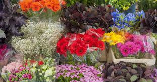 whole sale flowers floral care 101