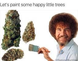 best 25 marijuana memes ideas on memes humor