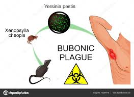 Contagious by Bubonic Plague Contagious U2014 Stock Vector Artemida Psy 132281178