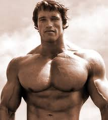 the best chest workout for complete pec development