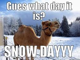 Funny Snow Memes - guess what day it is snow day funny meme