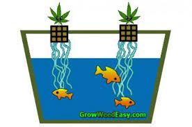 chambre de culture cannabis fait maison chambre de culture fait maison cheap chambre de culture fait maison