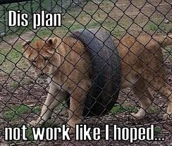 Funny Fail Memes - failed meme plan work memes comics pinterest meme