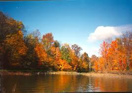file alum creek park fall colors jpg wikimedia commons