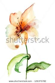 yellow lily flower watercolor illustration by regina jershova