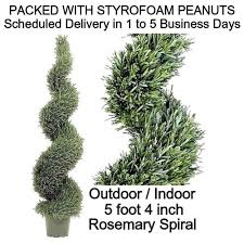 outdoor tree lights save buy 64 rosemary spiral indoor
