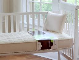 Dust Mite Crib Mattress Cover Theultimategreenstore Dust Mites Your Baby The Importance Of