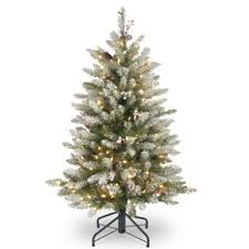 buy dunhill fir trees from bed bath beyond