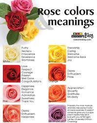 what do different colours mean what color roses mean rose colors and meanings wwwcobornsblog
