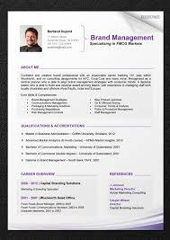 Sample Chronological Resume Template by The 25 Best Chronological Resume Template Ideas On Pinterest
