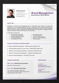 resume template professional 2 46 best cv 2 images on resume templates cv