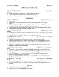 Resume Templates Google Docs In English Sample Of A Resume Template Resume Template Executive Executive