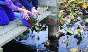 australian native water plants washington state noxious weed control board