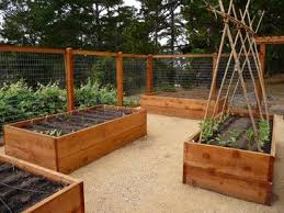 78 best gardening raised beds images on pinterest raised beds