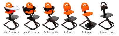 Bloom High Chair Instructions Svan Signet Complete Highchair Pregnancy U0026 Newborn