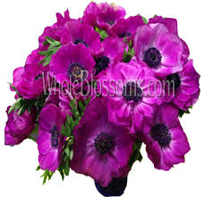purple roses for sale blue and purple flowers for wedding