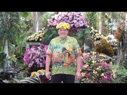 Botanical Garden Orchid Show Orchid Show Thailand 2017 In New York Botanical Garden