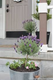 adding curb appeal to our front porch start at home decor