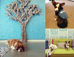 Honest Office Friday Finds Billy Wolf K 9 Coatery Dog Bandanas