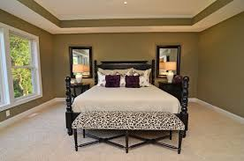 painted tray ceiling bedroom houzz