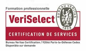 bureau v itas formation certification auprès du bureau veritas ccs formation