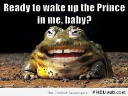 Funny Frog Meme - 21 wake up the prince in me frog meme pmslweb