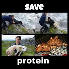 Protein Meme - save protein beast motivation