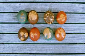 dyed easter eggs with leaf or flower motifs nettle and quince