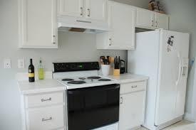 Spraying Kitchen Cabinets White Amusing Diy Painting Kitchen Cabinets White Kitchen Cabinet Doors