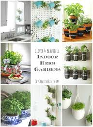 indoor kitchen herb garden gardening ideas