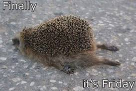Finally Friday Meme - funny friday pictures