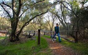 folsom thanksgiving run spend a year on the trails with 12 hikes the sacramento bee