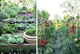 Backyard Planning Ideas Best Vegetable Garden Design U2013 Exhort Me