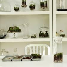 diy moss terrarium gallery garden design
