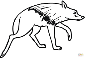 brown hyena coloring page free printable coloring pages