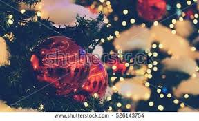 Whiteboard Christmas Decorations by Traditional Christmas Tree Stock Images Royalty Free Images