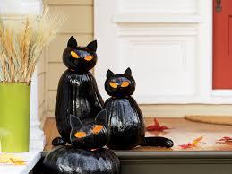 make black cat pumpkins sunset