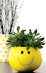 Smiley Face Vase Ceramic U2013 United Wholesale Flowers